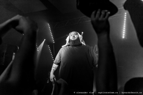 action_bronson_tagged-11